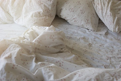 Today I will do absolutely nothing (Cat Girl 007) Tags: apartment bed bedding bedroom blanket closeup cloth comfort concept copyspace cover crumpled duvet fabric home hotel indoors interior linen messy morning pillow relax rest sheet unmade untidy lazyday