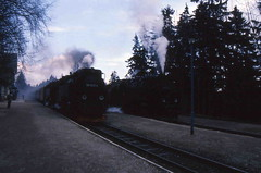 99 7237 (Ray's Photo Collection) Tags: germany steam locomotive 99 1992 ng narrowgauge 7237 deutschland eastern dr