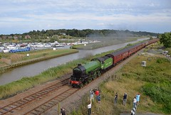 LNER B1 Loco No.61306 at the head of the Steam Dreams tour returning to Kings Cross, from Lowestoft, passing by the Marina at Haddiscoe. 31 08 2019 (pnb511) Tags: trains railway wherrylines steam traction loco locomotive lner b1 61306 mayflower steamdreamshaddiscoewaterriverhaddiscoe cut boats marina carriages people trees smoke reeds