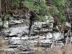Rock Wall  IMG_8698 (Photo Phil PA) Tags: rocks geology rockwall rockcities rockoutcropping canyon springcreek springcreekcanyon