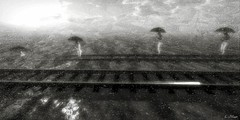 Expectations 3: Pulled Under (Loegan Magic) Tags: secondlife landscape abstract statues water oceanrain traintracks blackandwhite monochrome surreal
