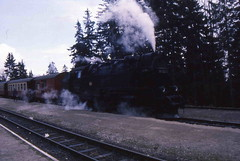 99 7242 (Ray's Photo Collection) Tags: germany steam locomotive 99 1992 ng narrowgauge 7242 deutschland eastern dr