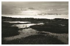 Wide angled pond (Mark Dries) Tags: markguitarphoto markdries fujica gsw690 wideangle 65mm 6x9 mediumformat kennemerduinen dunes landscape dunescape dramatic epic burning sky darkroomprint darkroom
