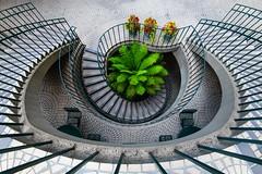 Embarcadero (sarah_presh) Tags: usa roadtrip sanfrancisco staircase spiralstaircase nikond850 embarcadero symmetry
