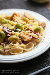 Pasta Shells with Brussels Sprouts and Vegan Chickun (haraldwalker) Tags: vegetable italianfood meatless dish chickun plate healthy vegancheese vegan pasta food delicious onion homemade soyprotein brusselssprout healthyeating vegetarian lunch meal readytoeat dinner freshness brusselssprouts