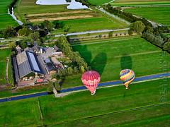 SMS_20190914_0666_A3+_Luchtfoto_Lopikerwaard_met_luchtbalonnen_Fcr.jpg (Luchtfotografie SiebeSwart.nl Aerial Photography) Tags: peatmoorarea landscape perceel lowholland nederland stockcattlebreeding aerial weiland holland peatpolder hoogveen landschap verkaveling historicallandscape veeteelt landdivision vogelvluchtperspectief lowland luchtfoto wei netherlands trekgaten strokenverkaveling weide pastures bogmeadowsarea pasture meadow aerialphoto percelen historischlandschap veenweidegebied subdivision veenpolder veenweide trekgat hoogveengebied inpoldering landbouw polder droogmakerij polders lowlands agriculture laagland birdseyeview laagholland