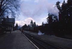 Narrow Gauge Steam Locomotive (Ray's Photo Collection) Tags: germany steam locomotive 1992 ng narrowgauge deutschland eastern dr