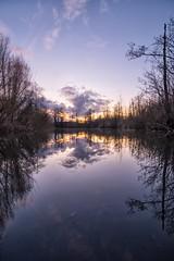 Parc d'Isle 2 (petercottret) Tags: nikon d610 tokina 1628 saintquentin aisne parcdisle