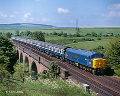 Summer Flora (chrissyMD655) Tags: ecml rellymill viaduct class 45 45104 br blue era peak