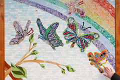 10/366 butterfly mosaic