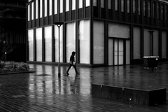 Crossing the wet place (pascalcolin1) Tags: paris13 homme man pluie rain humide wet lumière light reflets reflection lignes lines photoderue streetview urbanarte noiretblanc blackandwhite photopascalcolin 5omm canon50mm canon pavés pavement