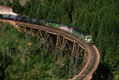 Greenhorn Trestle (Moffat Road) Tags: burlingtonnorthern bn 196 emd freighttrain gp50 3147 greenhorntrestle greenhornbridge weed skyline montana bridge mullanpass montanaraillink mrl mrlthirdsub mrl3rdsub train locomotive railroad mt