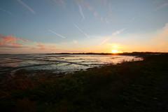 Sunset (christina.marsh25) Tags: farlingtonmarshes naturereserve marshland reedbeds coast reclaimed birds sunset
