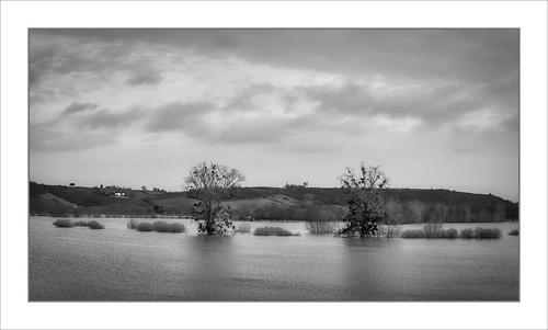 Inondations Du Layon