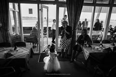 Little Girl at Wedding (Steven Robinson Pictures) Tags: wedding girl dress blackandwhite cute 24mmf28d nikond700 cinematic primelens reportage weddingphotography weddingflowers scotland people portrait environmentalportrait