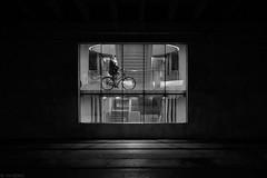 Fietsvenster (Tim Boric) Tags: utrecht centraal station stationsplein fietsenstalling raam venster window