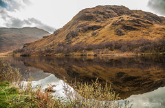 "Autumn colours at Loch Eilt, looking south, to Sgurr na Paite, from the north shore, on the ""Road to the Isles."" (Scotland by NJC.) Tags: autumn الـخَرِيف outono 秋天 jesen podzim efterår herfst otoño syksy automne herbst φθινόπωρο autunno 秋 가을 høst jesień toamnă осень lakes lochs reservoirs waters meres tarns ponds pool lagoon lago 湖 jezero sø meer järvi lac see λίμνη 호수 innsjø reflections likenesses images replications mirror image casting back 影像 odraz spejling weerspiegeling reflexión heijastus widerspiegelung αντανάκλαση riflessione 反射 반사 refleksjon odbijanie reflectare sgurrnapaite locheilt roadoftheisles scotland"