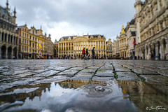 Brussels after the rain - Ben Heine Photography (Ben Heine) Tags: architecture badweather belgian belgium blue brussels bruxelles building centralsquareofbrussels city cold environment europe european fall famous fresh gothic grandplace grandsquare grandeplace historic history landmark market old ornate outdoor protection rain raindrop rainfall rainyday reflection shower splash square street tourism tourist tourists tower town travel umbrella unesco urban walking wet winter