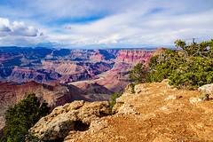 Grand Canyon (grand Yann) Tags: amerique arizona usa mountain america montagne landscape grandcanyon paysage étatsunis