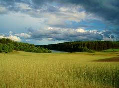 2011-06-24 Szlak edukacyjny wokół 5 jezior w okolicach Wąglikowic (12) (aknad0) Tags: polska wąglikowice krajobraz białe jeziora pola las