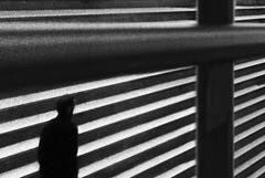 Black Grease (paulo josé abrantes) Tags: analogue film meyer orestor rolleiflex washi street photography urban mood candid
