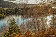 "Mountains, trees, lochs, islands and irresistible beauty-Glen Affric. (Scotland by NJC.) Tags: lakes lochs reservoirs waters meres tarns ponds pool lagoon lago 湖 jezero sø meer järvi lac see λίμνη 호수 trees foliage vegetation arboretum شَجَرَة árvore 树 drvo strom træ boom árbol puu arbre baum δέντρο albero 木 나무 sunset nightfall dusk sundown gloaming twilight غُرُوبُ الشَّمْس ""pôr do sol"" 日落 ""zalazak sunca"" ""západ slunce"" solnedgang zonsondergang crepúsculo auringonlasku ""coucher de soleil"" sonnenuntergang ηλιοβασίλεμα tramonto glenaffric northwesthighlands scotland"