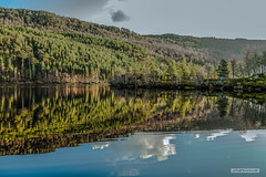 "Trees of the Caledonian Forest, in a mirror image, in glorious Glen Affric. (Scotland by NJC.) Tags: forest woodland plantation trees grove ""temperate rainforest"" غَابَة floresta 森林 šuma les skov bos ""bosque grande"" metsä forêt wald δάσοσ foresta reflections likenesses images replications mirror image casting back 影像 odraz spejling weerspiegeling reflexión heijastus widerspiegelung αντανάκλαση riflessione 反射 반사 refleksjon odbijanie reflectare sunset nightfall dusk sundown gloaming twilight غُرُوبُ الشَّمْس ""pôr do sol"" 日落 ""zalazak sunca"" ""západ slunce"" solnedgang zonsondergang crepúsculo auringonlasku ""coucher de soleil"" sonnenuntergang ηλιοβασίλεμα tramonto glenaffric northwesthighlands scotland"