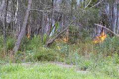 Bushfire - One Mile (vk2gwk - Henk T) Tags: bushfire onemie nsw australia fire emergency
