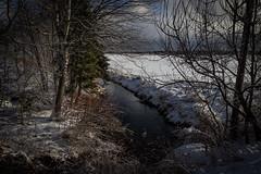 Little black creek (soniamarmen) Tags: winter landscape water creek black white contrasts lowlight morning cloudy