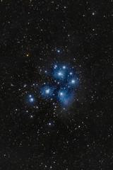 Plejades (Christoph Wenzel) Tags: nacht deepsky messier deutschland nebel sonyalpha6000 thüringen blau sonysel70200mmf28gmaster sterne neuhausamrennweg plejaden dunkelheit m45 astro astrometrydotnet:id=nova3869857 astrometrydotnet:status=solved