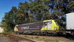 TXL 193 554 Rheine GVZ (D) (Bahn NRW) Tags: txl txlogistik 193 193554 leitwolf vectron siemens rheine gvzrheine niedersachsen emsland