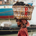 Carrying Coal in Basket on Head, Dhaka Bangladesh