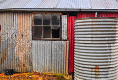rusty old and broken (holly hop) Tags: 52in2020 wall windows broken shed australia starnaud hww wallwednesday windowwednesday rusty tin corrugated