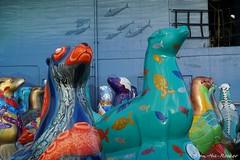 SF Fisherman's Wharf - 011420 - 07 - Pier 39 (Stan-the-Rocker) Tags: stantherocker sony ilce sanfrancisco fishermanswharf pier39 aquariumofthebay street sel18135
