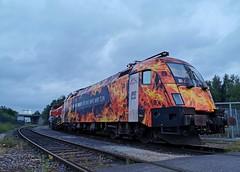 TXL 182 572 Rheine GVZ (D) (Bahn NRW) Tags: txl txlogistik 182572 wirbrennenfürdaswaswirtun taurus mrce gvzrheine rvm de18 emsland rheine