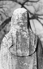 Oak Ridge Cemetery, 2019, Nikon FM, Ilford FP-4+ (richeee67) Tags: springfieldillinois oakridgecemetery nikonfm ilfordfp4 blackandwhitefilm ilfordfilm statue epsonv600
