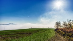 Fields (Slávka K) Tags: blue trees light sky green nature grass landscape countryside day horizon foggy sunny 2019 skyline lines path walking timeforme view hill shrubs