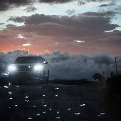 An Encounter on a Ridgetop (LooknFeel) Tags: takenwithiphone iphone6 20200115 clouds sunset horizon storm sky • car headlights waterdroplets dog seni8789osd