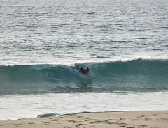 PLAYA DE BOLONIA (PROVINCIA DE CÁDIZ) - SURF - (DAGM4) Tags: españa europa europe espagne espanha espagna espana espanya espainia spain spanien 2020 playas de cádiz provinciadecádiz playasdecádiz zonaestrechodegibraltar playadebolonia tarifa campodegibraltar surf