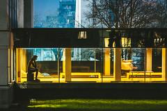 Čiurlionis Museum of Art | Kaunas #14/365 (A. Aleksandravičius) Tags: čiurlionis art night architecture 2020 museum long exposure city kaunas lietuva europe lithuania nikon z 7 nikonz7 z7 mirrorless nikkor 85mm 85 365 3652020 85mmf18g nikkor85mm nikon85mm18g f18g nikon85mm project365 14365