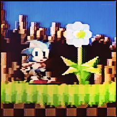 Sonic the Hedgehog (Konrad Winkler) Tags: videospiel sonic level1 megadrive sega mittelformat 6x6 kodakportra160 extensiontube32 hasselblad503cx makro epsonv800 emeraldhill sonic2