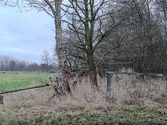Oberneuland 101C269682 (Torben*) Tags: rawtherapee em10 olympusimagingcorp olympusm25mmf18 bremen bultensee osterholz bäume trees tor gate