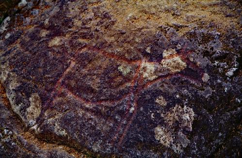 """Norwegen 1998 (490) Helleristninger Evenhus • <a style=""""font-size:0.8em;"""" href=""""http://www.flickr.com/photos/69570948@N04/49388582676/"""" target=""""_blank"""">View on Flickr</a>"""