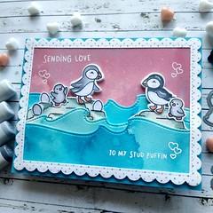 To my stud puffin (Cicasi) Tags: cardmaking handmadecard valentine valentineday lawnfawn lawnfawnatics puffin