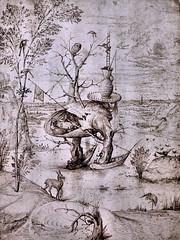 IMG_6530F Hieronymus Bosch 1450-1516 Hertogenbosch  L'Homme-Arbre The Tree-Man  ca 1500 Musée Wien Albertina (jean louis mazieres) Tags: peintres peintures painting musée museum museo österreich autriche austria vienne wien albertina
