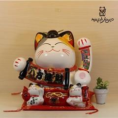 Bát Phương Tấn Tài (meothantaihapyoko) Tags: mèo thần tài may mắn hapyoko gò vấp vẫy tay tphcm giá rẻ mua nhật chiêu meo man vay màu vàng