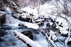 Rio Sorteny (Willie Roman Fotografía) Tags: andorra nieve snow fujifilm fujinon fujistas fujista capture momento moment longexposure largaexposicion xt3 colors cold frio
