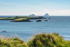 Ireland_2018_34 (s4rgon) Tags: allanticocean atlantik coast halbinsel insel ireland irland island küste reise ringofkerry sea skelligmichael sonyalpha7rm2 travel urlaub vacation