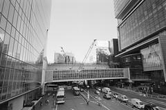 Neo Shibuya