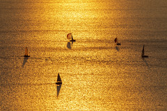 The Circle Game (_aires_) Tags: switzerland grandvaux cantonofvaud iris aires sails sailboats sunset golden lakegeneva goldenlake canonef70300mmf456isusm canoneos5dmarkiv